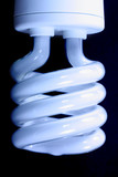 Compact fluorescent efficient power saving light bulb poster