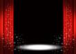 Spotlight - 10061723