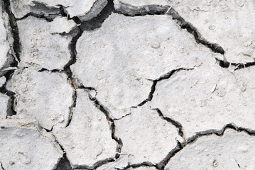 Dry ground with a net of cracks