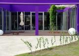 Boutique violette avec patio de pierre, Berlin, Allemagne. poster