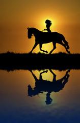 Horse Ride Reflection