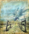 Napa Valley vineyard in winter on a grunge background.
