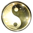 Yin Yang sign on a white background