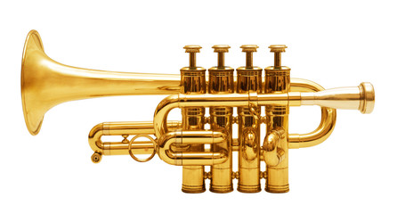 wind musical instrument isolated over white background