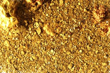 Pépites et paillettes d'or