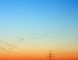 Autumn returns in sunset poster