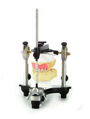 Dental articulator with stone models and denture teeth.