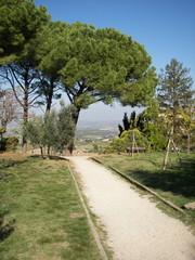 San Gimignano il Parco