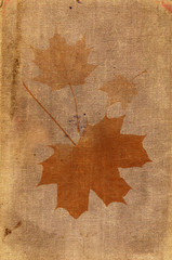 Piece of an old canvas with spots and maple leaves
