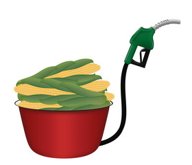 Biofuel from crops such as corn