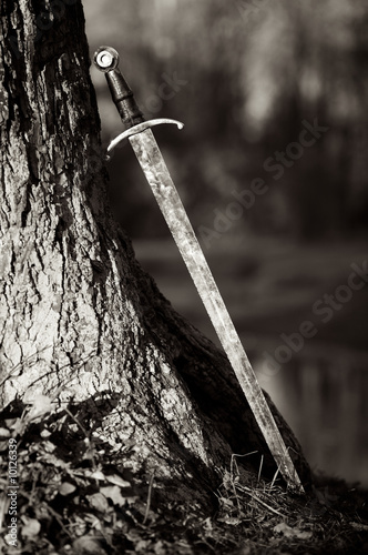 Ancient sword leaning against a tree in a forest.