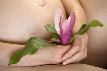 Pregnant woman's belly and hands holding pink flower.