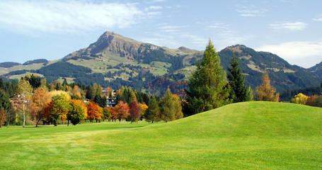 Grassland and mountains at Kitzbuhel - Austria