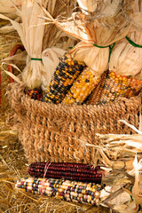 Corn Arrangement