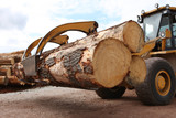 Industrial grabber truck carrying large timber logs