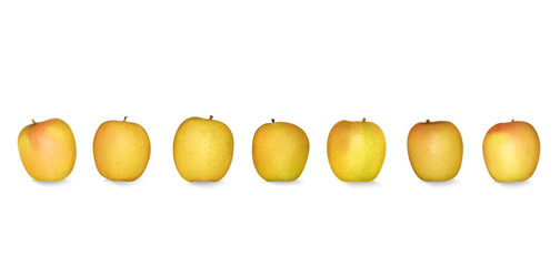 Pommes alignées