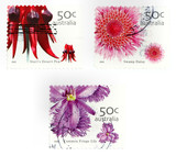 Collectible stamps from Australia. Set with flowers and plants. poster
