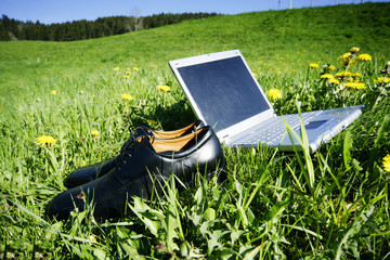 laptop in a spring field