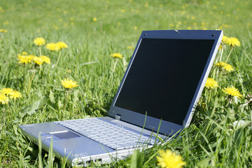 laptop in grass as a symbol for fieldwork,leisure or holiday