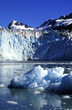 glacier in the sea bay.