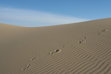 Fußspuren im Sand der Oregon Sanddunes - USA