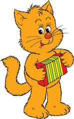 Kitten musician