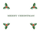 Letter of congratulation of Christmas with four adorns of holly poster