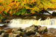 Beautiful waterfall with autumnal leaves, Scotland
