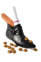 shoe with carrot and candies for an dutch holiday