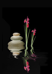 Zen Spa Stones and Red Iris Flowers