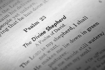 A macro detail of Psalms 23 in the Christian Bible