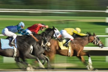 Three racing horses in fierce competition for the finish line