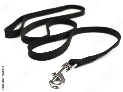 photo of the black dog-lead against the white background