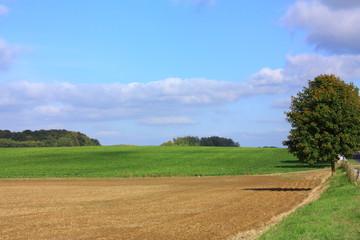 Champ cultivé,Aisne,picardie