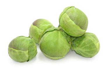 brussel sprouts cabbage on white background