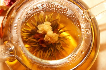 Chinese Tea Flower in a Teapot
