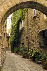scorcio di un borgo medievale (viterbo)