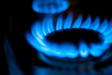 Blue Flames from a Natural Gas Stove Burner poster