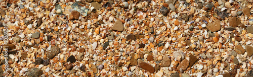 The fragment of  beach with colored shells.