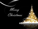 Fototapety Christmas tree with Merry Christmas greetings