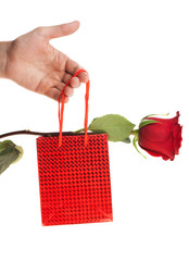 Hand giving present box and red rose