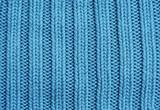 Fototapeta niebieski - zbliżenie - Organiczne