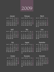 Calendar 2009,gray and pink colors