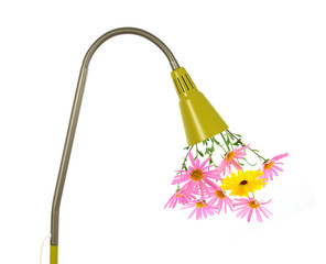 Eco energy concept. Flowers growing out of a green lamp.