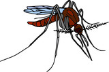 Vector - colour mosquito  isolated on white background poster