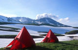 Tents below Mutnovsky Volcano,Kamchatka poster