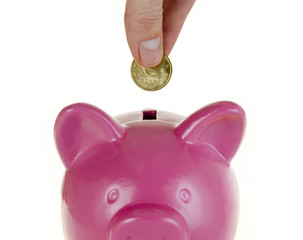 hand putting money into a piggy bank isolated on white