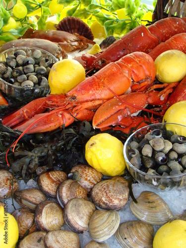 plateau de fruits de mer