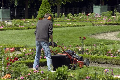 Fotobehang Tuin jardinier