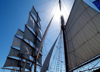 Sunny Sails